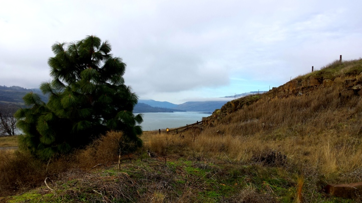 Columbia River from BK Overlook