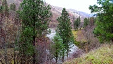 Klickitat River and Trail