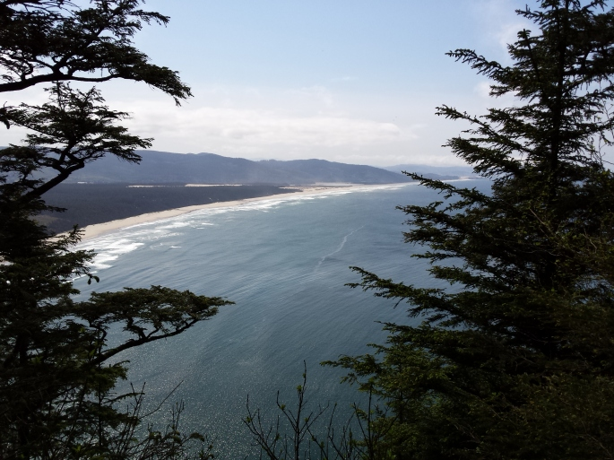 From Cape Lookout Trail