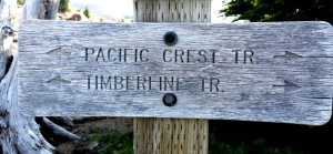 Timberline Trail sign