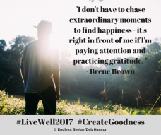 day-15-chasing-gratitude