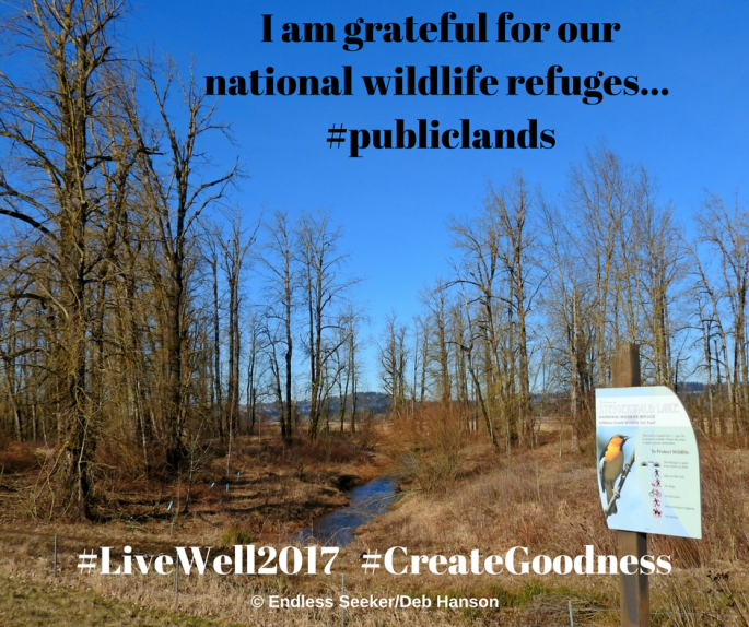 day-28-grateful-nwrs
