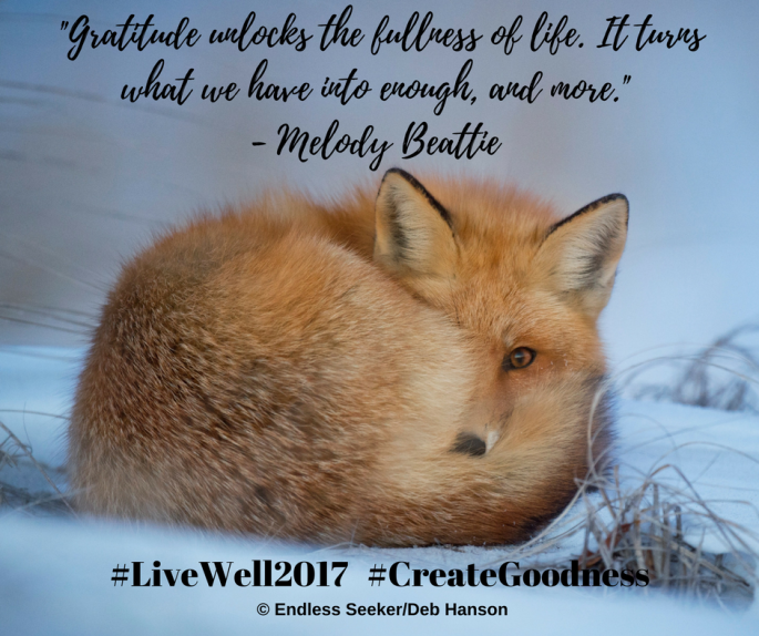 Day 68 gratitude creates enough beattie