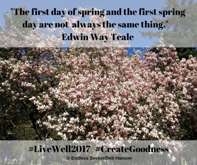 Day 79 Spring