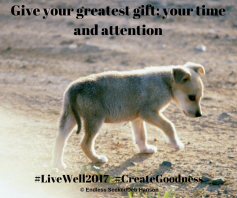 Day 108 give time and attention