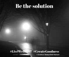 Day 116 contribute to solutions