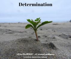 Day 131 Determination