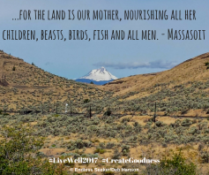 Day 191 the land is our mother